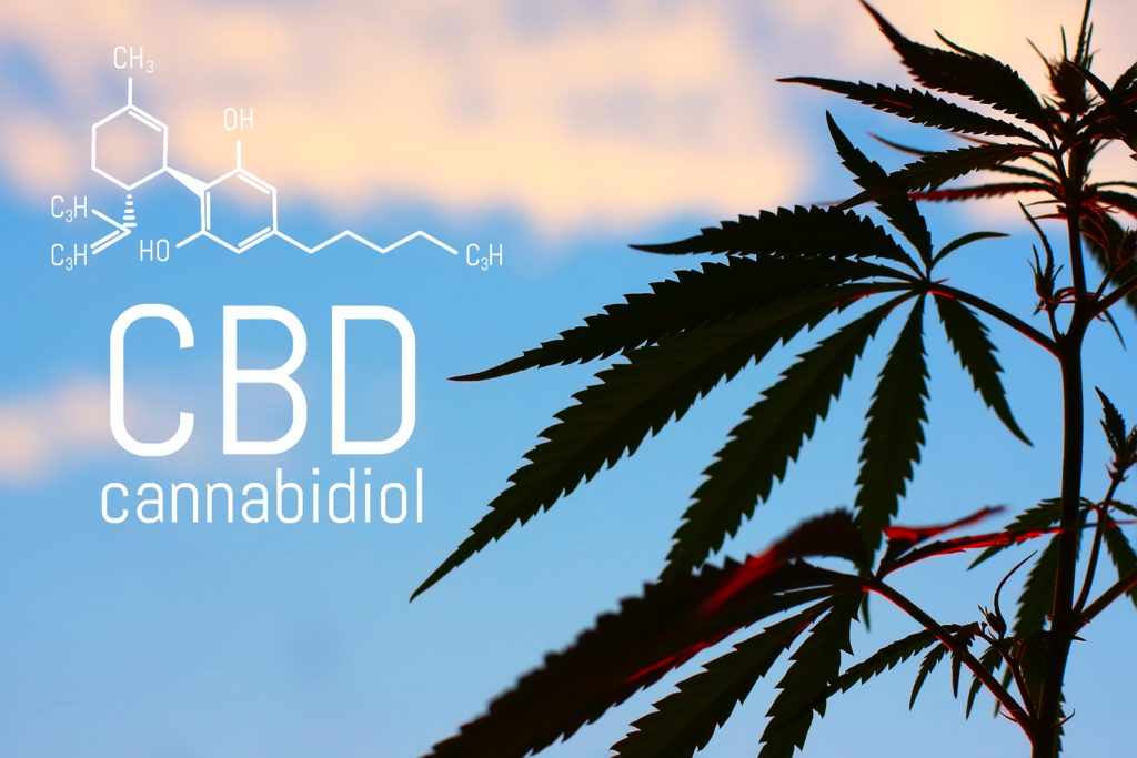 Does CBD show up on a drug test? - TrueTest Labs, Chicago